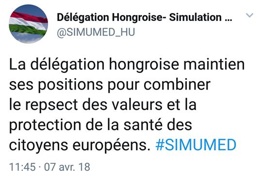 twitter simulation